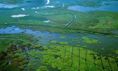 农村生活污水处理技术现状与对策