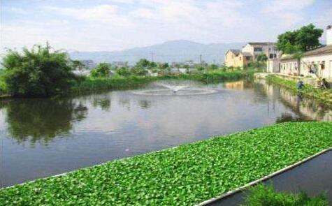 农村生活污水治理现状的调研与思考